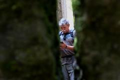 IMG_1575 (Lorenzo Pauselli) Tags: altoadige sdtirol vacanze castelrotto 2016 estate dolomiti montagna streghe valli rocce funghi fungo portraits ritratto primopiano scattirubati