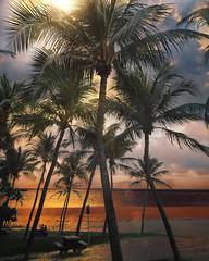 East Coast Park, Singapore | Photography by @dotzsoh (manbeachrm) Tags:  clouds sunsets  blue naturelovers sunriseorange sunsetstream sunsetporn sundownskylovers pordosol cloudskylinennatureperfection naturelover landscapelovers landscapes naturlandscapecaptures horizon puestadesol silhouetteinstasky piclogy trbsunsetsfx