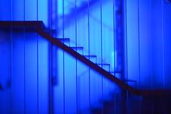Para Nona Delgado Muoz. (rroel58) Tags: azul
