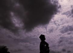 Storm is comming / Nadchodzi burza (dochtuir) Tags: sculpture garden royal poland polska palace warsaw residence warszawa rzeba paac wilanw ogrd