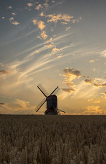 Another Stevington sunset (grbush) Tags: windmill mill towerwindmill stevingtonwindmill stevington bedfordshire sunset field farm rural countryside wheat clouds sonyslta77 sky dt30mmf28macrosam