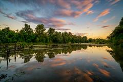 Mal Dunaj (tono.balucha) Tags: water field river landscape three