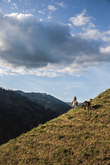 Pleasure Cruise (The Noisy Plume) Tags: ranch horse ride farm stock idaho trail pack salmonriver mule equine trailriding frankchurchwilderness riverofnoreturn sheppranch salmonriverbreaks westernpleasureriding backcountryranch