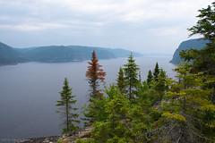 Fjord du Saguenay (2) (montrealrider) Tags: nikkor20mmf35ai fjorddusaguenay