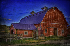 Likely a barn (Dave Arnold Photo) Tags: mt mont montana deerlodge rockcreek cattle company barn big outdoor arnold davearnold davearnoldphotocom pic picture photo photography photograph photographer milf tour wife hot naked idyllic landscape nude spread sky ass awesome canon 5d mkiii us usa upskirt ranch sex farm sexy beautiful serene peaceful huge high summer powellcounty wild pussy cow tit fantastic american scenic 24105mm cloud grass farmyard rural redbarn fence rancher west cowboy rustler texture