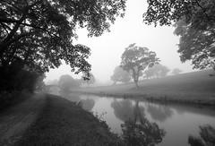 Leeds Liverpool canal, summit pound (ProspectMik) Tags: blackandwhite monochrome serene canal leedsliverpoolcanal mist morning trees countryside lancashire bridge