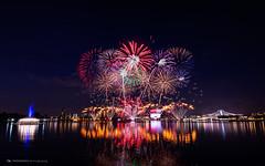 Birthday Blooms (dogessence) Tags: ndp ndp16 national day parade 2016 singapore sg fireworks stadium night preview bloom birthday firework tanjong rhu