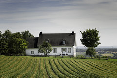 160819_063 Maison de ferme, Charlevoix (MiFleur...Thanks for visiting!) Tags: farmhouse ferme maison architecture agriculture garden rows rural countryside campagne cloture