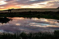 Sunset_by_the_waterwork3860-5 (allybeag) Tags: sunset reflection waterworks pond puddle crosscanonby
