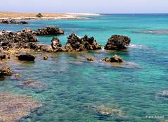 Le Orte (Otranto) (Frank Abbate) Tags: orte otranto mare scogli salento puglia sea rocks adriatico italy water sky horizon orizzonte cyan azzurro marino