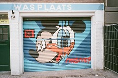 000057200007 (sadjeans) Tags: fujinaturas fujinatura1600 naturaxnatura richardphotolab 35mm film amsterdam holland thenetherlands jordaan mismey disney donald mickey graffiti streetart
