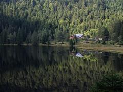 Kleiner Arbersee X (schauplatz) Tags: bayerischerwald bayerwald deutschland lamerwinkel urlaub kleinerarbersee landscape seascape lake karsee bavarianforest spiegelbild mirrorimage spiegelung forest wald tarn cirquelake