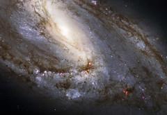 4504910807_7f4199a03c_b (meshuchan) Tags: nasa hubblespacetelescope hubble m66 space spiralgalaxy messier66 galaxy goddardspaceflightcenter