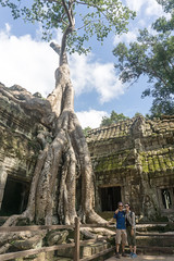 Angkor Wat, Cambodia (DitchTheMap) Tags: 2016 angkorwat architecture building cambodia jungle seasia siemreap ancient angkor asia asian big buddhism complex culture flickr flower forest heritage hindu history khan khmer landmark monument old preah prohm reap religion religious root ruins siem sky stone ta temple thom tombraider tourism travel tree tropical wat wood world