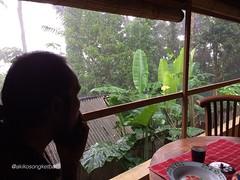 #morning #rain #raining #breakfast #coffee #cofeetime  #tebola #sidemen #karangasem #bali @akikosongketbali (Akiko Matsubara) Tags: morning rain raining breakfast coffee cofeetime tebola sidemen karangasem bali