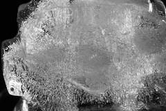 Backlit Icecube (steve_whitmarsh) Tags: macro closeup ice bubbles monochrome backlit frozen macromondays