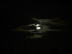 Moonlit (Alan FEO2) Tags: evening night moon clouds dark blackandwhite black white monochrome fullmoon backlit glow outdoors panasonic dmc g1 2oef