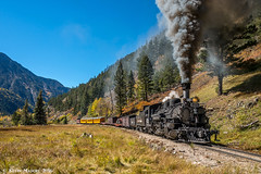 MP 483 - Needle Creek Canyon (kdmadore) Tags: drgw denverriograndewestern durangosilverton dsng durango silverton steamlocomotive steamengine railroad train narrowgauge