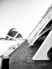 City of Sciences 3 (FloBue) Tags: 2016 valencia spanien spain spagna architettura architektur architecture blackandwhite biancoenero schwarzweiss olympus silverefexpro kontrast highcontrast contrastoalto cittdellascienza highkey calatrava