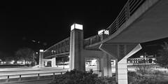 298/366 (local paparazzi (isthmusportrait.com)) Tags: 366project canon5dmarkii tokina1628f28 zoom lopaps pod 2016 iso800 noise grain black white contrast blackandwhite blanco negro bw blancoynegro isthmus redskyrocketman localpaparazzi isthmusportrait madisonwi danecountywisconsin pedestrianbridge bridge bikepath marquettestreet eastwashingtonavenue eastwash lowlight outdoors night evening 20mm wide wideangle ultrawide zoomlens longexposure f11 cropped crop 12x24