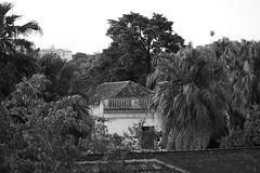 Antigo Casarão no Bairro Teresópolis (Vagner Eifler) Tags: brasil casa portoalegre riograndedosul casarão abandono teresópolis patrimôniohistórico avenidaclemencianobarnasque