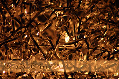 Gold Time_net (peter pirker) Tags: macro yellow canon gold austria sterreich krnten carinthia gelb seeboden peterfoto eos550d peterpeterpirker
