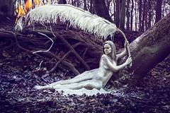 Phoenix (Katelin Kinney) Tags: woman white tree bird phoenix photoshop painting giant nude fire woods magic feather powder flame burn ashes fantasy classical dust flour rebirth legend myth reborn elongated