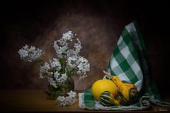 Calabazas (molina09) Tags: flores nikon blanca bodegón molina d800 calabazas