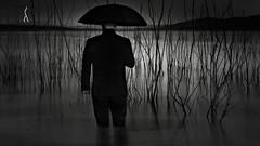 Despair (Donald Palansky Photography) Tags: storm water umbrella dark sad sony despair lightning alpha fineartphotography donaldpalansky