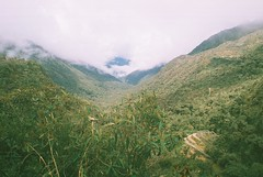 Beyond Sayacmarca (Wild Constraint) Tags: trees mountains green peru inca clouds forest ruin jungle valley cloudforest incatrail sayacmarca