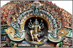 4811- Pennadam - Thoonganaimadam temple ( ) 02 (chandrasekaran a) Tags: india buildings sony structures elephants hinduism parakeets tamilnadu templeart gopurams lordvishnu appar garudan vridhachalam gandharvas padalpetrasthalam sundarar templesarchitecturesscuptures pennadam thevaram sambandhar saivaism thirumuraitemples thoonganaimadam mudhukundram figuralgopuram
