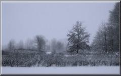 And It Keeps Falling and Falling and Falling :-) (btn1131 www.needGod.com) Tags: winter snow cold landscape olympus stylus1