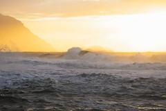 Resplendent (IanLudwig) Tags: canon photography hawaii kauai hawaiian beaches tog togs niksoftware hawaiiphotos vsco cep4 canon5dmkiii hawaiianphotography 5dmkiii canon5dmarkiii ianludwig canon70200mmf28lisusmii lightroom5 canon2xtciii adobephotoshopcc