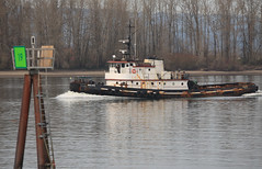 WYCLIFFE (N324F) Tags: columbiariver tugboat tug tugs tugboats vancouverwashington wycliffe frenchmansbar workboats canon6d sigma120400 pacificnorthwesttugs theothervancouver columbiarivertugs 6605254 367613020 wdh3985