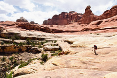 Midday Sun Wreaking Havoc with the Exposure (jpmckenna - Alaska Bound) Tags: utah hiking canyon backpacking canyonlandsnationalpark canyonlands desertlandscape squaw getoutside needlestraverse
