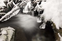 Brrrr... (Herv D.) Tags: winter ice river waterfall stream hiver rivire cascade valentin pyrenees torrent gave pirineos gourette laruns ossau glase