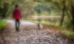 Walking the Dog/Man - take your pick (Anne Worner) Tags: anneworner em5 lensbaby norway on1 velvet56 autumn casual color dog fall fallen hoodie lake layered layeredimages layers leash leaves man olypus path scenery scenic texture trees walking walkingthedog woods ononesoftware street streetphotography followingsomeonetogettheirphoto manualfocus manualfocuslens