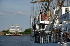 Tall Ship's Race 2016 Mir DST_4352 (larry_antwerp) Tags: mir morgenster antwerp antwerpen       port        belgium belgi          schip ship vessel        schelde        tallshipsrace