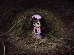 In the nest =^_^= (dean.dromos) Tags: blythe blythedoll rbl doll dollphoto dollphotograph purplehair