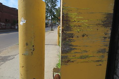 IMG_4116 (Mud Boy) Tags: nyc brooklyn newyork bushwick yellow lookslikeart likeapainting gesture