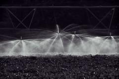Black Magic - HSS (TuthFaree) Tags: bw water contrast rural ga georgia blackwhite farm spray elements irrigation topaz hss swga slidersunday