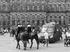 Dam (streamer020nl) Tags: amsterdam 2016 260716 holland nederland paysbas niederlande netherlands centrum citycentre dam politie paard horse police polizei pferd