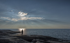 Happy Summer (Jyrki Liikanen) Tags: selfie sea seascape sunbeams bluesea sunnyday water outdoors enjoy rocks horizon bythesea gulfofbothnia finland nikonphotography d500 remotephotography outdoor sky ocean cloud coast landscape shore seaside