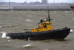 Tuman (Kev Gregory (General)) Tags: russia russian tug tuman imo 88588178 petrozavod 1973 project 498 st saint petersburg storm winds waters choppy kev gregory navigator of the seas royal caribbean