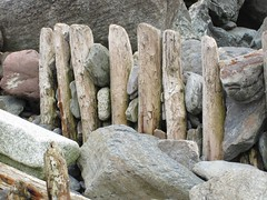. (andrewchance1) Tags: groynes rocks
