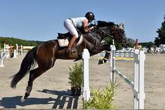 DSC_1214 (2) (ploufjf_64) Tags: paus show jumping chevaux pau 2016
