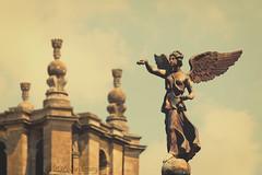 024/116 Statue (Jamarem) Tags: statue oxfordshire blenheim palace angel 116picturesin2016 matte preset