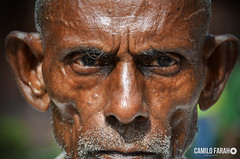 Monje Ind (Camilo Farah Fotgrafo) Tags: monje sari shari india uttar pradesh indu mirada look ojos eyes feel black men man old oldman oldmen retrato portrait profundo pensante enojado serio autofocus flickrtravelaward wrinkles age color craft dark lady handkerchief male smile teeth decay mr homeless godless