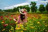 _DSC3423-编辑-1 (SanM666) Tags: 百日菊 花园 红色 女人 云彩