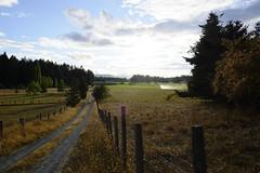 DSCF4508 (Ross Howie) Tags: fuji fujifilm valley field sprinkler fence grass